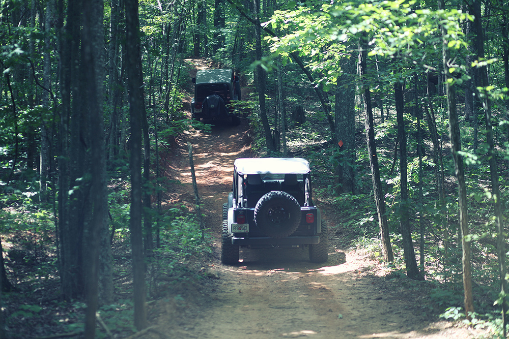 Jeeps on Off-Road Trail